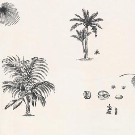 Sunworthy papier peint palmier noir et blanc studio e k l - Papier peint blanc et noir ...